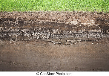 Real Grass and several underground soil layers - Cross...