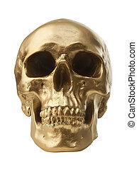 Golden skull on white background - Golden human skull...