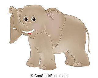 Elephant - Fauna - elephant