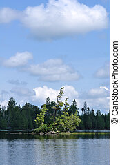Scenic Island on a Remote Wilderness Lake - Cedar Trees on...