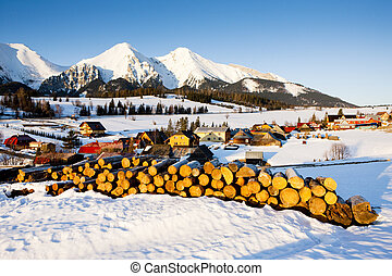Belianske Tatry (Belianske Tatras) in winter, Zdiar,...