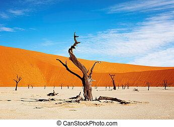 Namib Desert, Sossusvlei, Namibia - Dead tree in Dead Vlei -...