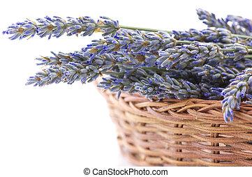 Buhch of lavander in basket - Bunch of dried lavender...