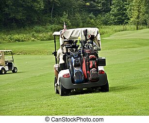 Golfers in Carts - Golfers in carts driving to their balls....