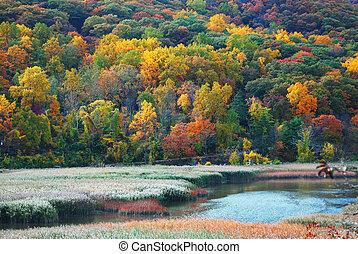 Autumn Mountain with lake