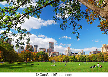 New York City Central Park with cloud and blue sky