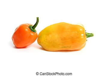 Habanero Capsicum chili hottest pepper in the world from...