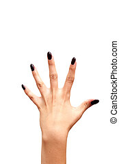 Back left hand fife fingers isolated on white