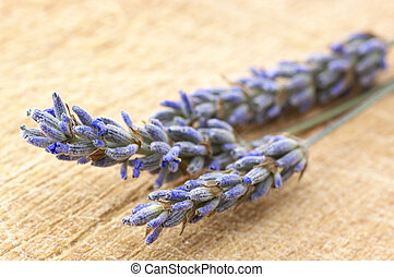 Twigs of lavander - Twigs of lavender close-up on wooden...
