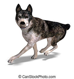 Grey Wolf 3D rendering with clipping path and shadow over...
