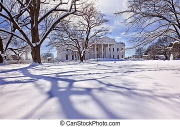 White House Trees After Snow Pennsylvania Ave Washington DC