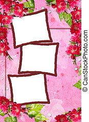 Pink  spring background with frames and flowers