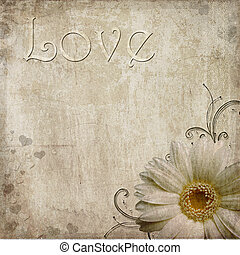 Old vintage shabby background with  daisy and text love