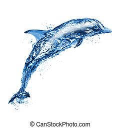 springt, Water, dolfijn