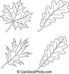 Leaves of plants, contour, set 1