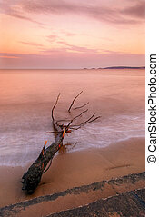 Sunset over Swansea Bay, Wales, with Mumbles in the...