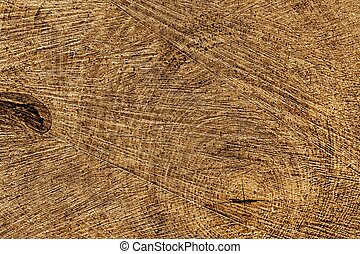 Wooden texture of a treetrunk