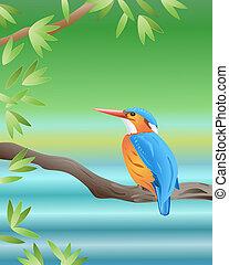 malachite kingfisher - an illustration of a malachite...