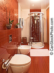 Modern shower cabin and bidet in bachroom