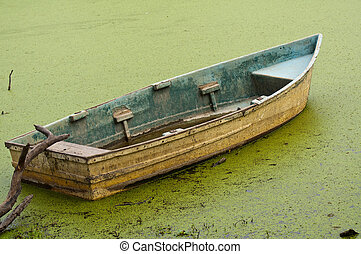 old rowing boat floating on algae - abandoned old boat left...