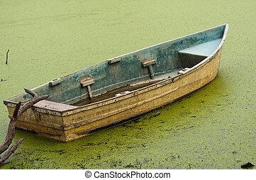 antigas, Remar, bote, flutuante, algas