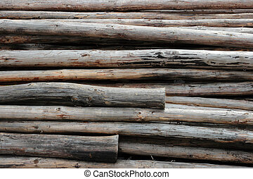 bunches of felled trees at a logging site