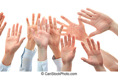 Hands - Image of several raising human hands a white...