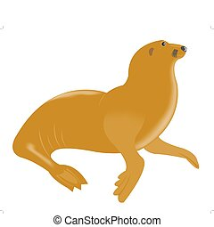 Sea animal walrus on white background