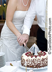Cutting the Wedding Cake - bride and groom cutting their...