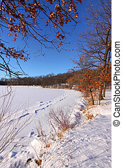 winter scene - Beautiful winter scene in a Michigan state...