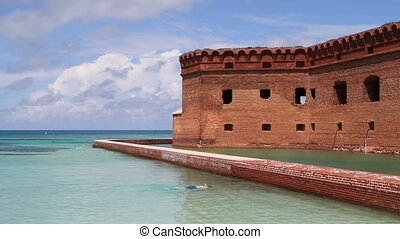 Snorkeler At Fort Jefferson - Man snorkels in the calm...