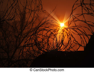 Barbed wire fence and Light of Hope