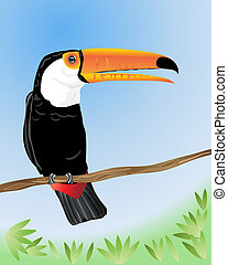 toco toucan - an illustration of a toco toucan sitting on a...