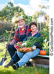 gardening - Senior couple with a basket of harvested...