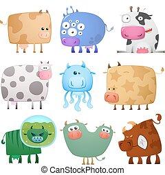 divertido, vacas