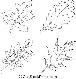 Leaves of plants, contour, set 2