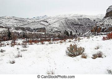 Winterscape - Barren winter landscape along the Naches River...