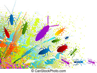 insect - Insect on the rainbow background