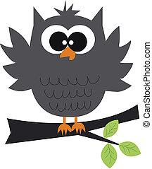 owl - a grey owl sitting on a branch