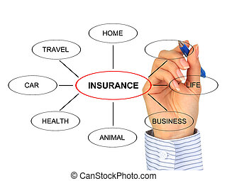 Insurance concept. All types of insurance.