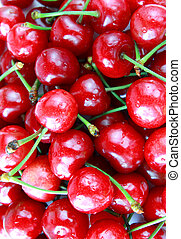 cherry fruit close up