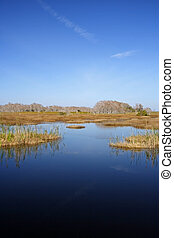 Florida Everglades - The scenic Florida Everglades, Big...