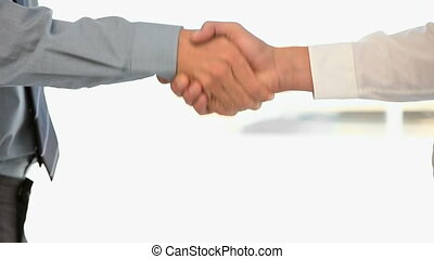 Businessmen shaking hands against a white background