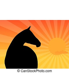 horse - Black silhouette of horse by sunset