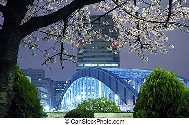Tokyo spring - night city scenery with blossom cherry branch...
