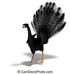 black fantasy bird with beautiful feathers. 3D rendering with clipping path and shadow over white