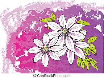 flower - White flower on the purple background
