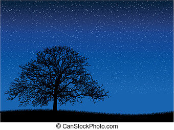 night - Black silhouette of old tree at night scene.