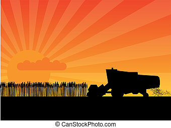 Black combine - Black silhouette of combine under the sunset...