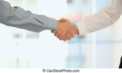 Men shaking hands in an office